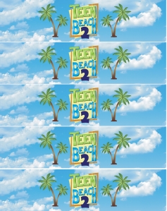 Teen beach 2 bottle wraps